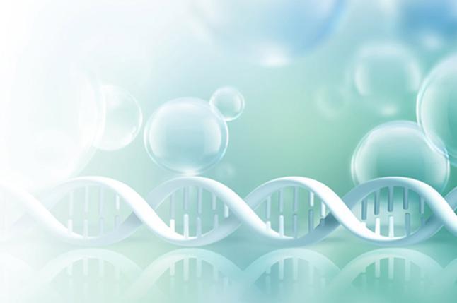 胎儿多大能做无创亲子鉴定多少钱-dna无创亲子鉴定